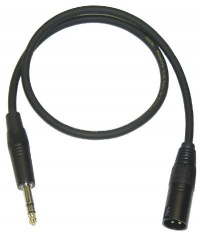 XLR Male to 1/4 TRS Balanced Cable - Bose Portable PA
